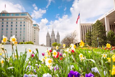 during the day: Close-up of flowers and Salt Lake Temple during day time, USA Stock Photo