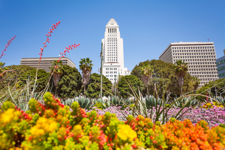 Town hall view with flowers in LA downtown, the USA during sunny summer day