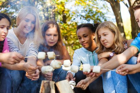 boy sitting: Happy friends hold marshmallow sticks near bonfire together on campsite during sunny autumn day in forest Stock Photo