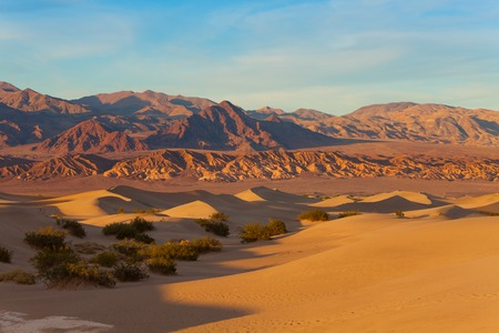 death valley: Sand dunes of the Death Valley in California panorama landscape