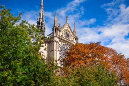 memorial cross: The spires and  stained glass of Notre Dame  emerging from behind autumn trees