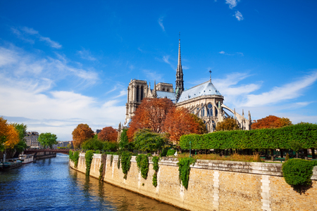 Panorama of the island Cite with cathedral Notre Dame de Paris situated on the river Seine