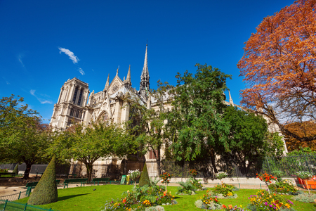 crown spire: View of Notre Dame cathedral though foliage of trees in park nearby