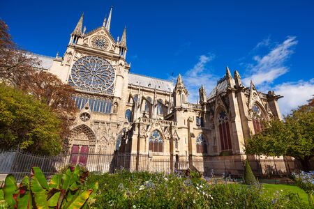 crown spire: The garden-bed with flowers blossoming in autumn in front of Notre Dame de Paris