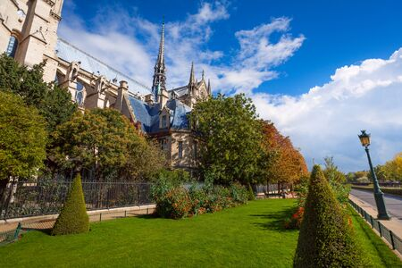 crown spire: View of Notre Dame cathedral though foliage of trees in park nearby and pedestrian path walk