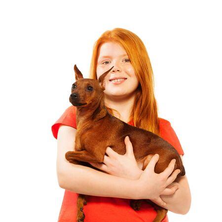 miniature breed: La muchacha hermosa roja Fortaleza Roja perro pinscher miniatura aislada en el retrato en blanco