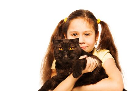 british shorthair: Little girl hold British Shorthair both looking to camera