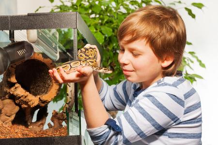 Jonge jongen die prachtige Royal of Ball python bewondert bij het serpentarium in handen houden