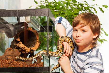 species of creeper: Young boy holding in hands small Royal python at the serpentarium and looking at camera Stock Photo