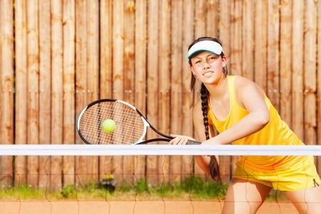 fun activity: Professional female tennis player hitting a ball on the clay court in summer Stock Photo