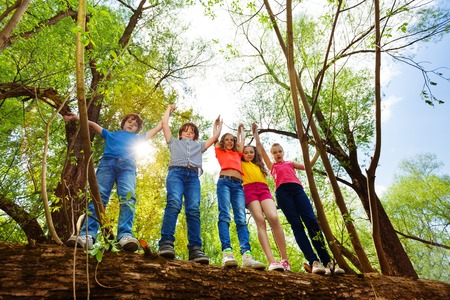 Five happy teenage boys and girls, standing in a row on a fallen tree, holding their hands up in the forest
