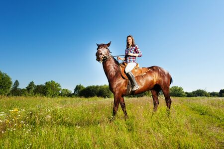 Side view portrait of young woman and her brown stallion, standing in a meadow Stock Photo