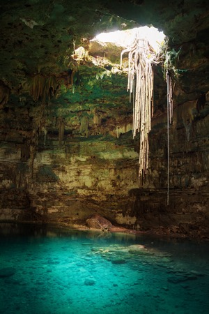 Blue cenote with hanging roots and clear water