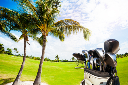 Golf bag with clubs against green course and palms