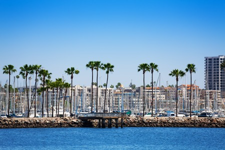 Long Beach cityscape with palms and yachts pylons