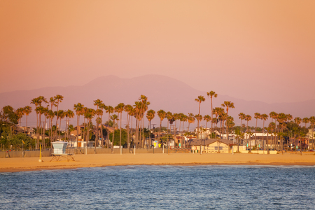 Beautiful view of Long Beach coastline framed with palm trees at dusk Stock Photo