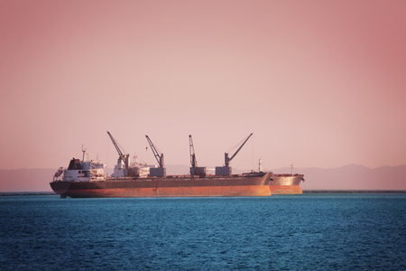 Bulk carriers with cranes loading cargo at sunset