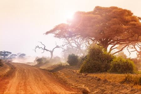 夕暮れ時の未舗装の道路と乾いたアフリカの風景