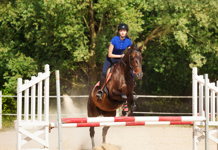 Jumping horse carrying horsewoman during training at racetrack Imagens