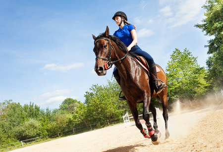 Low angle view picture of female rider on beautiful bay horse running gallop at racetrack Reklamní fotografie - 106036857