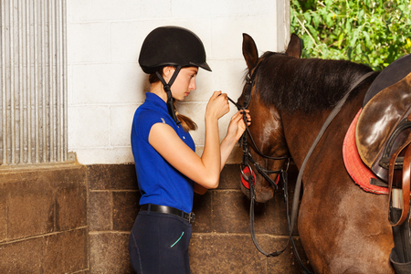 Jockey girl fitting bridle on bay horse at stables Banco de Imagens