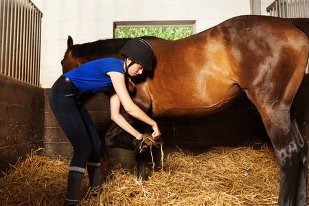 Young woman cleaning horses hoof at box stall