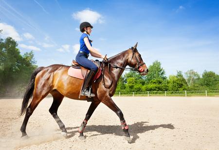 베이 말과 경마장을 타고 horsewoman