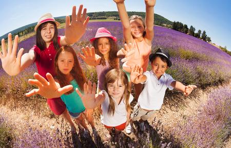 playmates: Niños felices en el campo de lavanda llegando a las manos