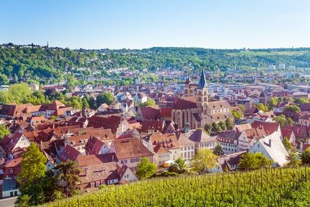 Esslingen with vineyards viewed from Dicker Turm
