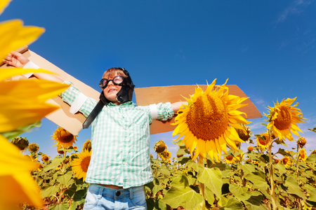 Boy with cardboard wings playing among sunflowers Imagens