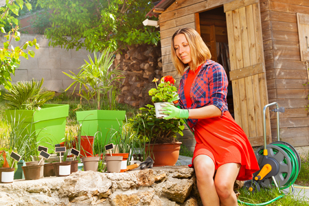 Beautiful woman watering plant in the garden