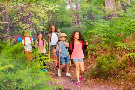 Gruppo di bambini che camminano nella foresta in attività estiva scolastica uno dopo l'altro con gli zaini