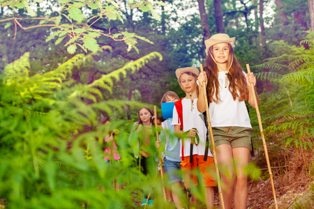 Group of kids on a hiking trail in the forest Stock Photo
