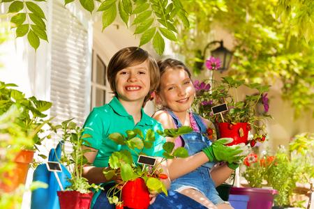 Little gardeners with potted strawberries plants Foto de archivo