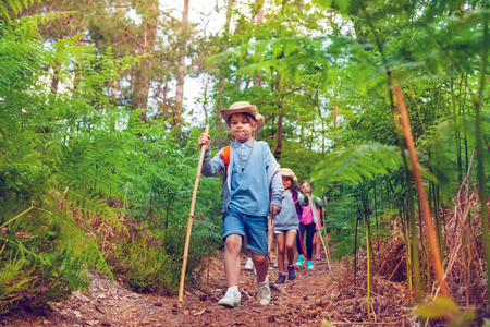 Small boys and girls walk with class in the forest
