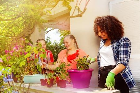 Three happy teen girls planting flowers outdoors Stock Photo