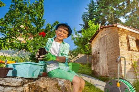 Little gardener potting red geranium at backyard