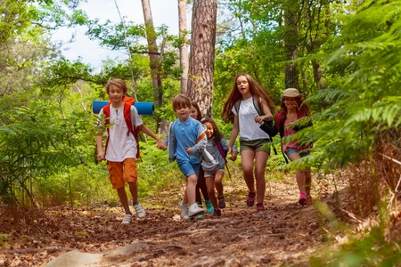 Group of kids running in the forest holding hands Stock Photo