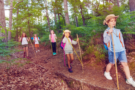 Group of small kids walk on scout hiking trail