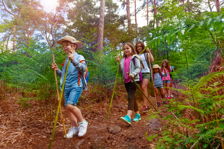 Group of kids walk in the forest during hiking
