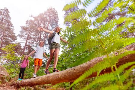 Summer forest activity kids walk over the log