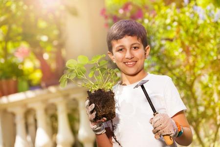 Pequeño jardinero con plantas de fresa y paleta Foto de archivo - 108040278