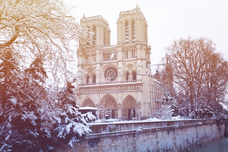 Notre-Dame Cathedral after snowfall in Paris, France Imagens
