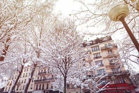 Snow-covered trees and buildings of Paris, France