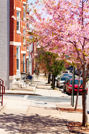 Sidewalks of Baltimore in spring, Maryland, USA Stock Photo
