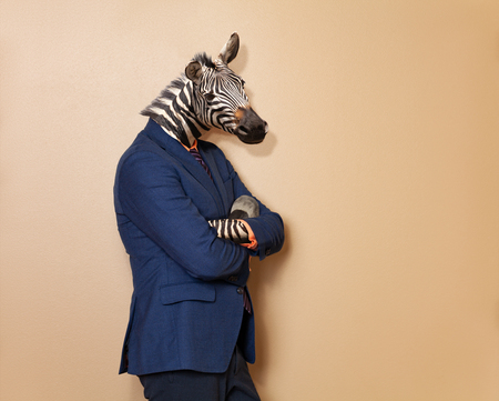 Male zebra in office clothing suit and shirt