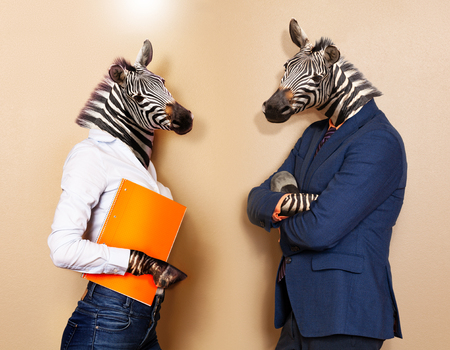 Office workers concept of male and female zebras Stock Photo
