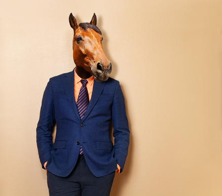 Male horse in office clothing suit and shirt 写真素材