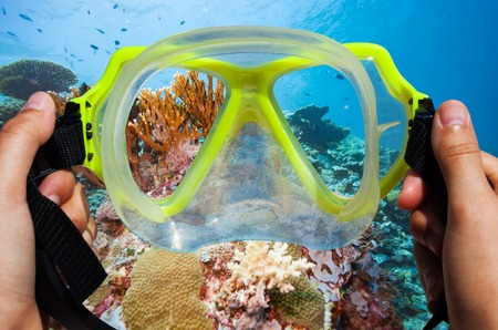 Snorkeling mask with coral background underwater image