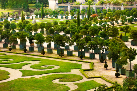 Palace of Versailles garden with trees in planters Foto de archivo
